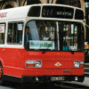 Leyland National 262