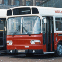 Leyland National 369