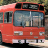 Leyland National 482