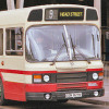 Leyland National 19